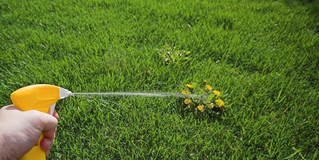 Take a look at these 12 natural and very efficient ways to get rid of weeds