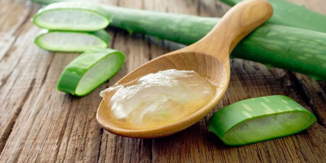 Here are all the benefits of Aloe Vera for human body