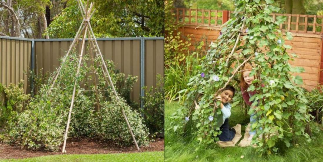You can grow a living playhouse in your backyard for your kids!