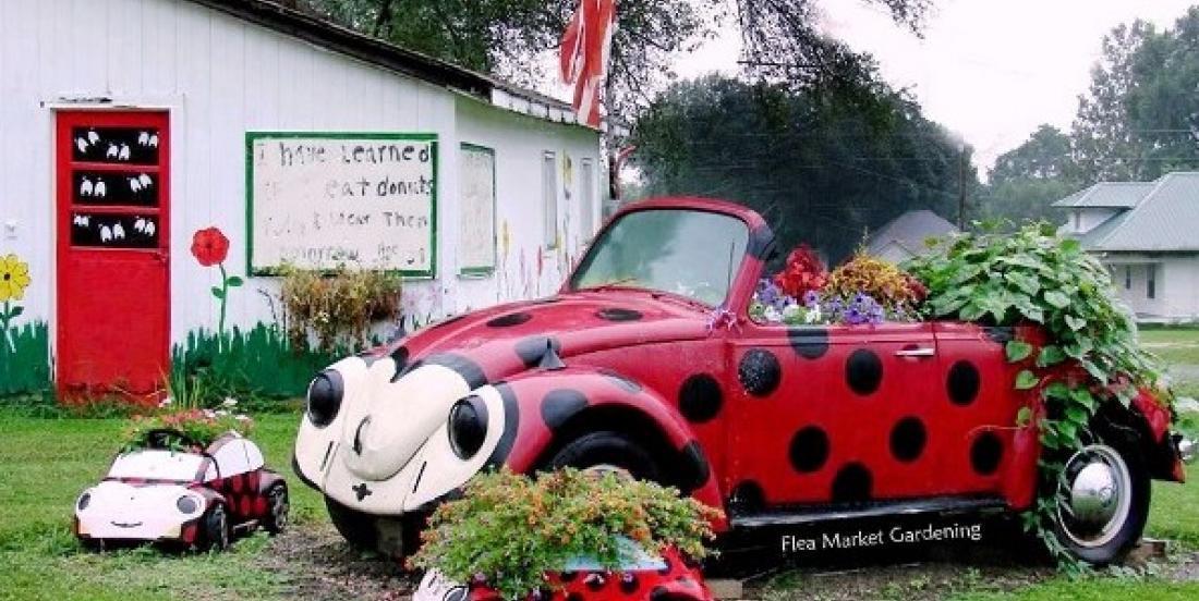 """This garden in Iowa is a true """"Ladybug"""" dream!"""