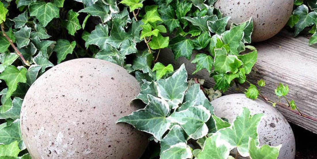 How to create unique decorative concrete balls for the garden.