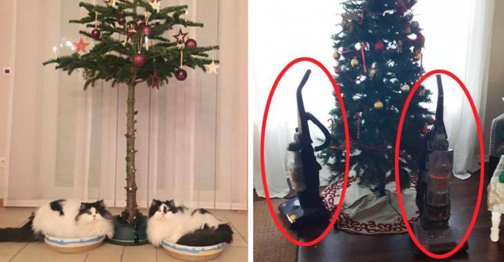 15 pictures of perfect christmas trees when you have a dog or a cat